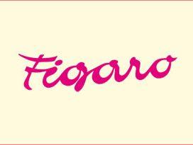 Coiffure Figaro