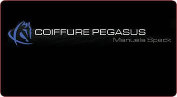 COIFFURE PEGASUS